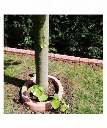 yuvarlak ağaç dibi bordür